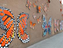 Butterfly Installation