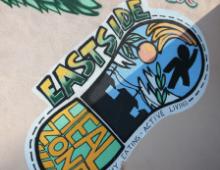 Eastside HEAL Zone image