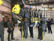 HART fake horse in sling